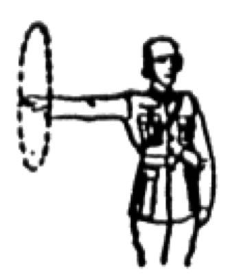 bras au buste circulaire